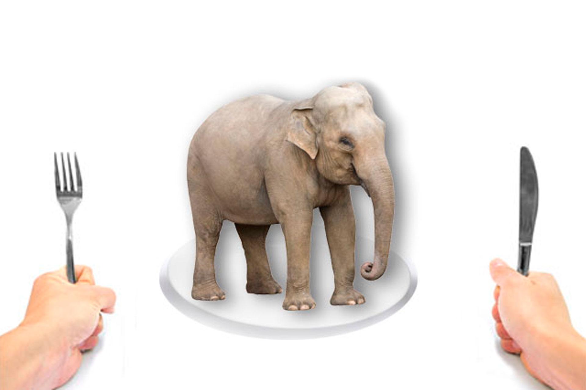 eating an elephant